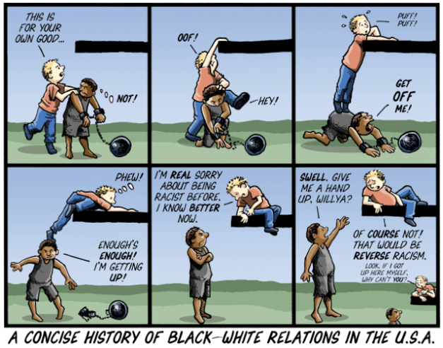concise history of race