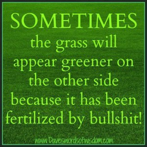 Sometimes-the-grass-will-appear-greener-on-the-otherside